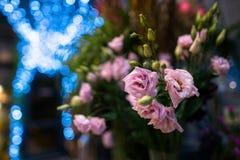 美好的关闭花花束隔绝与蓝色boke 库存照片