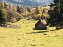 美好的农村田园诗风景在一晴朗的秋天天的山的 库存照片