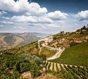 美好的农村风景在杜罗河地区 免版税图库摄影