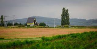 美好的农村风景在Biei,日本 免版税图库摄影