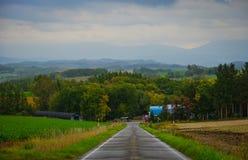 美好的农村风景在Biei,日本 免版税库存图片