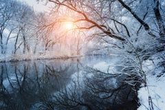美好的冬天在河的森林里日落的 免版税图库摄影