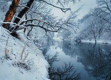 美好的冬天在河的森林里日落的 免版税库存照片