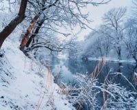 美好的冬天在河的森林里日落的 免版税库存图片