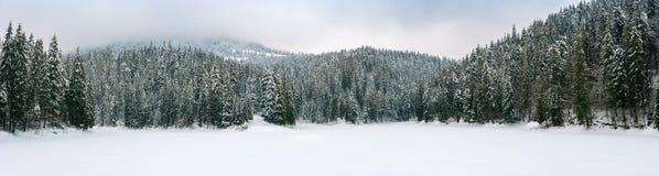 美好的冬天多山风景全景  免版税库存图片