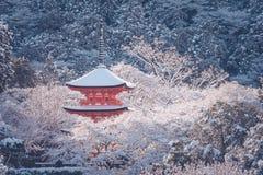 美好的冬天季节性红色塔在清水寺寺庙围拢与树在京都包括白色雪背景 免版税库存照片