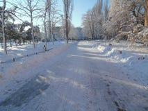 美好的冬天季节 免版税库存图片