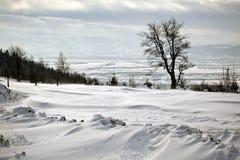 美好的冬天山全景 免版税库存照片