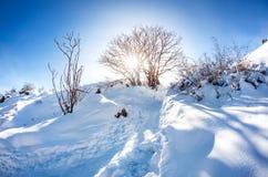美好的冬天山风景 库存图片