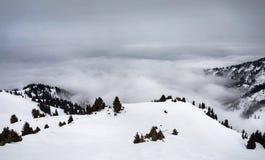 美好的冬天山风景 免版税图库摄影