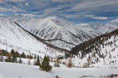 美好的冬天风景,阿尔泰山俄罗斯 库存照片