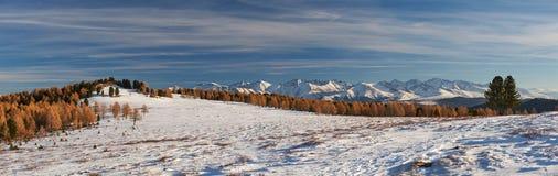 美好的冬天风景,阿尔泰山俄罗斯 库存图片
