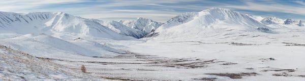 美好的冬天风景,阿尔泰山俄罗斯 免版税图库摄影