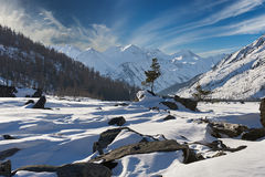 美好的冬天风景,阿尔泰山,西伯利亚,俄罗斯 库存照片