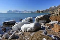 美好的冬天风景 免版税库存图片
