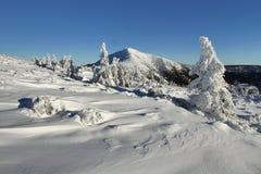 美好的冬天 免版税库存图片