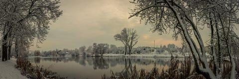 美好的冬天landscape.3d图象 从河海岸的全景,湖,池塘在一个积雪的城市公园通过沿海树和 库存照片