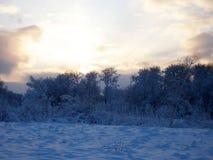 美好的冬天landscape.3d图象 在日落的天空 库存图片