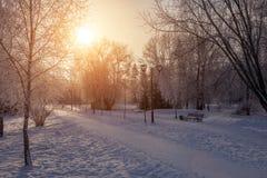 美好的冬天landscape.3d图象 免版税图库摄影