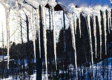 美好的冰柱在太阳发光反对蓝天 与垂悬从房子屋顶的冰冰柱的春天风景  春天投下冰柱 图库摄影