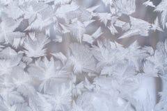 美好的冷淡的样式以巨大的针对性的雪花的形式在玻璃窗的 库存照片