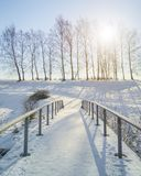 美好的冻结的自然在芬兰 免版税库存照片