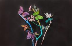 美好的出色的意见烘干了与装饰的蝴蝶艺术装饰的分支在深灰 免版税库存照片
