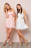 美好的别致打扮二妇女 图库摄影