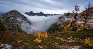 美好的华盛顿秋天自然风景-槭树通行证圈足迹 免版税库存图片