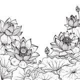 美好的单色与莲花的传染媒介花卉框架 库存图片