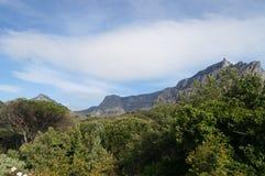 美好的南非` s开普敦` s,山和海视图 库存图片