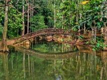 美好的反射在Bukit Wang瀑布, Jitra,吉打 免版税库存照片