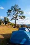 美好的后面野营的小山树型视图 图库摄影