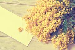 美好的含羞草花枝杈开花和心脏在浅粉红色的木背景 浅深度 8个看板卡eps文件招呼的包括的模板 春天natu 库存照片
