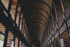 美好的图书馆建筑学 免版税图库摄影