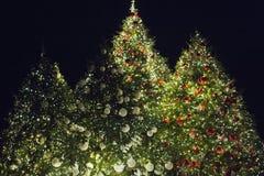 美好的圣诞节例证结构树向量 库存图片