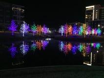 美好的圣诞节例证结构树向量 免版税库存照片