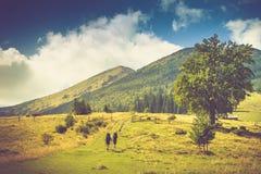 美好的夏天山横向 有背包的游人在山的上面上升 免版税图库摄影