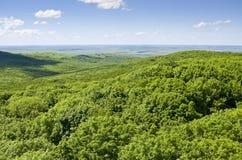 美好的夏天风景丘陵地带, 库存图片