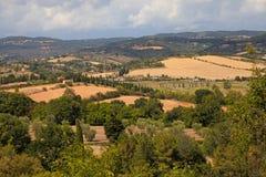 美好的夏天风景在托斯卡纳,意大利 免版税库存照片