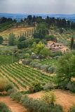 美好的夏天风景在托斯卡纳,意大利 库存照片