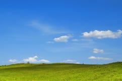 美好的夏日。 图库摄影