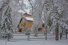 美好的多雪的森林寒冷冬天 库存图片