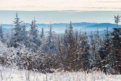 美好的多雪的风景在魁北克,加拿大 免版税库存照片