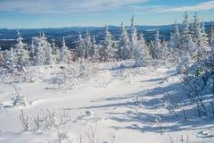 美好的多雪的风景在魁北克,加拿大 免版税图库摄影