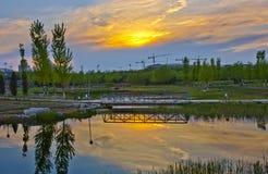 美好的夜间风景 免版税库存图片