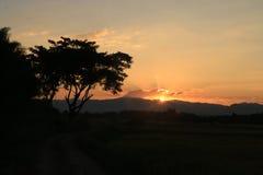 美好的太阳上升和太阳集合背景与黑色现出了轮廓树与橙色天空 免版税图库摄影