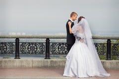 美好的夫妇婚礼 免版税库存图片