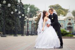 美好的夫妇婚礼 库存图片