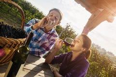 美好的夫妇饮用的酒 库存照片